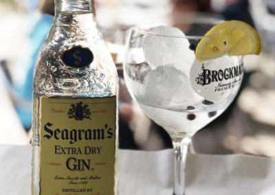 gintonic-seagrams
